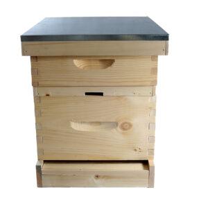 10-Frame Langstroth Hives